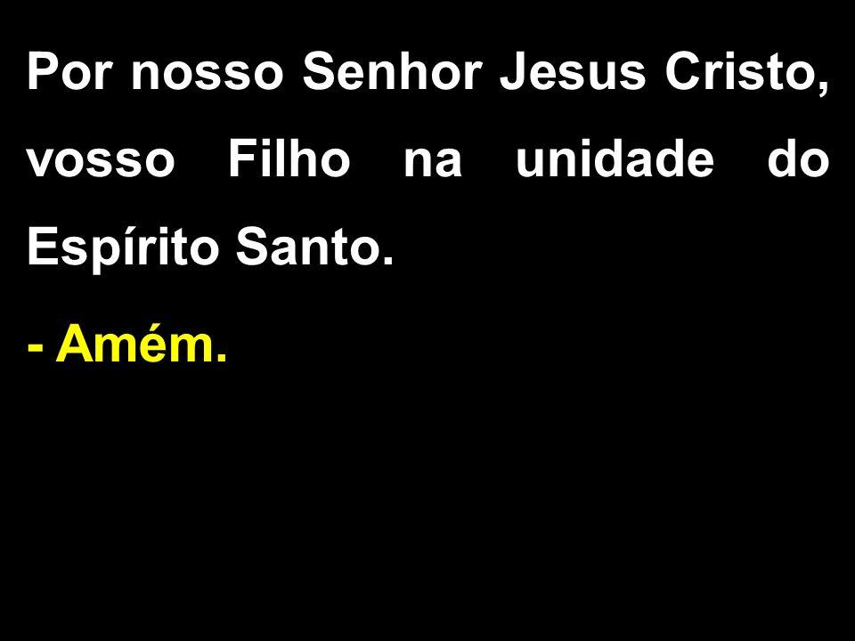 Por nosso Senhor Jesus Cristo, vosso Filho na unidade do Espírito Santo. - Amém.