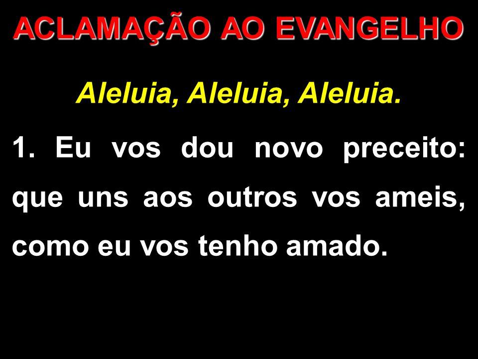 ACLAMAÇÃO AO EVANGELHO Aleluia, Aleluia, Aleluia. 1. Eu vos dou novo preceito: que uns aos outros vos ameis, como eu vos tenho amado.