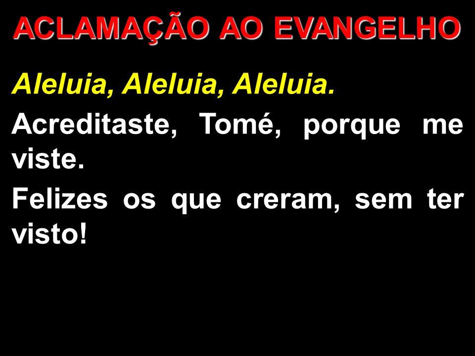 ACLAMAÇÃO AO EVANGELHO Aleluia, Aleluia, Aleluia. Acreditaste, Tomé, porque me viste. Felizes os que creram, sem ter visto!