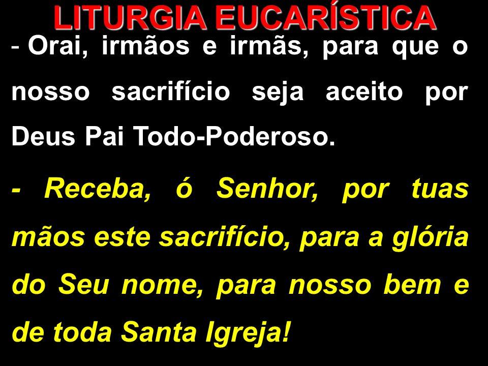 - Orai, irmãos e irmãs, para que o nosso sacrifício seja aceito por Deus Pai Todo-Poderoso. - Receba, ó Senhor, por tuas mãos este sacrifício, para a