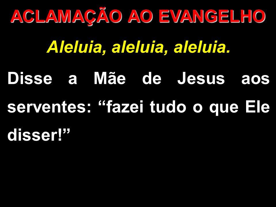 Aleluia, aleluia, aleluia. Disse a Mãe de Jesus aos serventes: fazei tudo o que Ele disser! ACLAMAÇÃO AO EVANGELHO