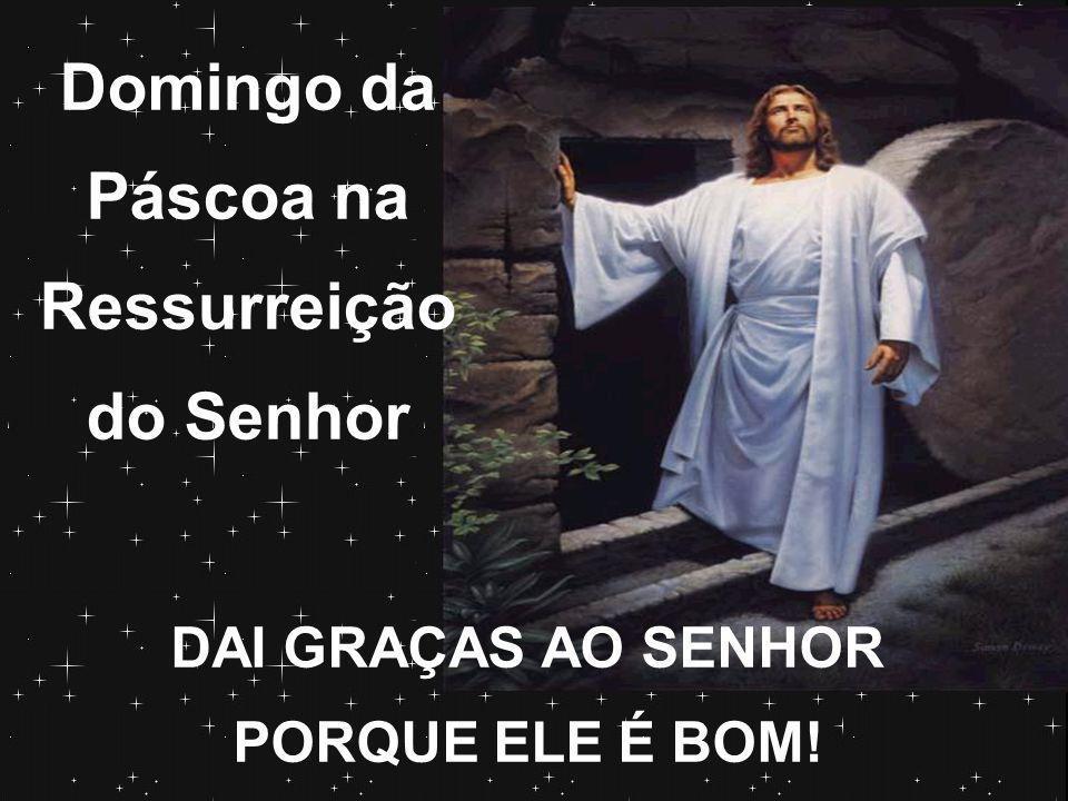 Ó morte, onde está tua vitória./ Cristo ressurgiu, honra e glória.