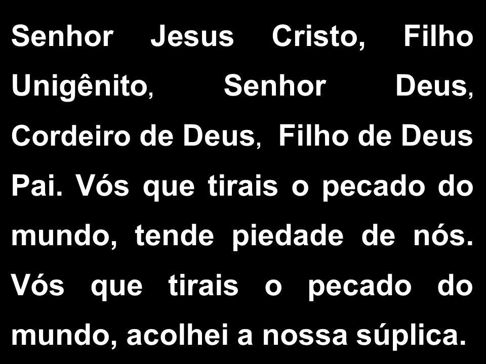 Senhor Jesus Cristo, Filho Unigênito, Senhor Deus, Cordeiro de Deus, Filho de Deus Pai. Vós que tirais o pecado do mundo, tende piedade de nós. Vós qu