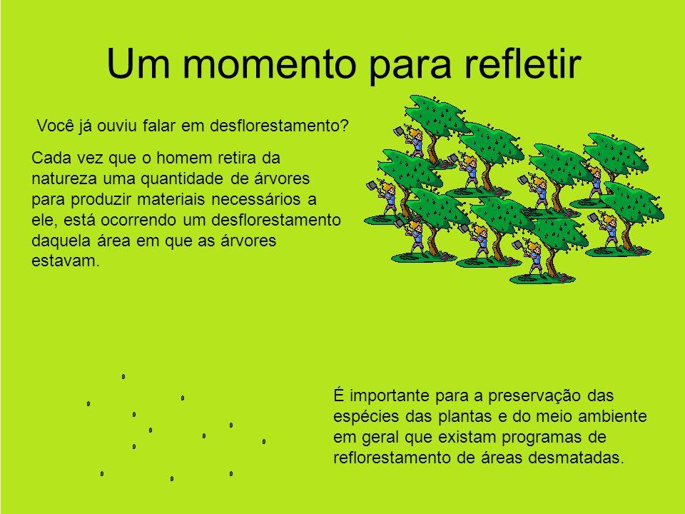 Um momento para refletir Você já ouviu falar em desflorestamento.