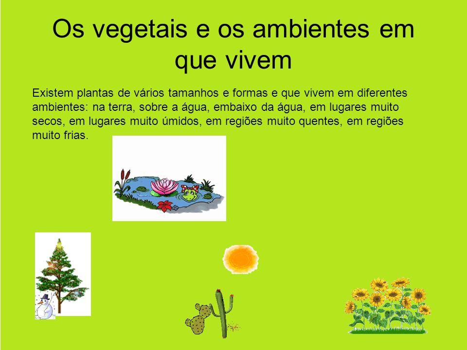 Os vegetais e os ambientes em que vivem Existem plantas de vários tamanhos e formas e que vivem em diferentes ambientes: na terra, sobre a água, embaixo da água, em lugares muito secos, em lugares muito úmidos, em regiões muito quentes, em regiões muito frias.