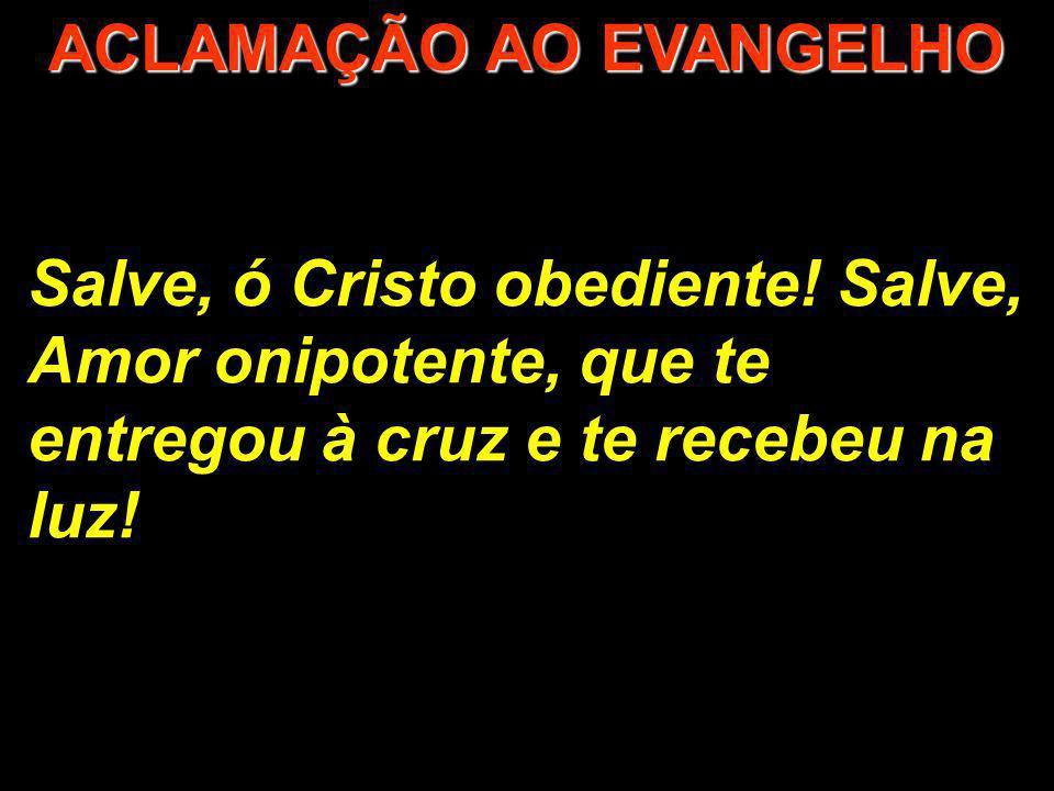 Salve, ó Cristo obediente! Salve, Amor onipotente, que te entregou à cruz e te recebeu na luz! ACLAMAÇÃO AO EVANGELHO