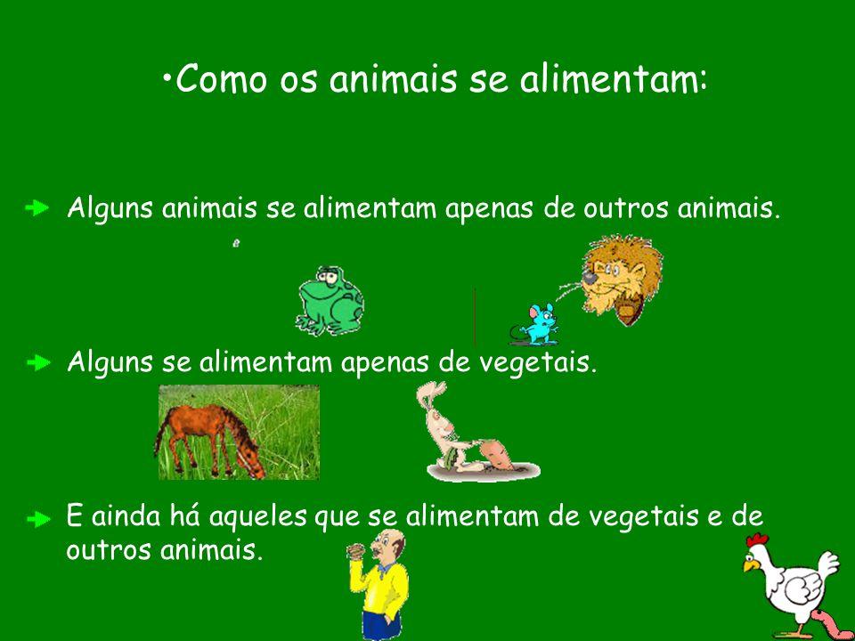 Como os animais se alimentam: Alguns animais se alimentam apenas de outros animais. Alguns se alimentam apenas de vegetais. E ainda há aqueles que se