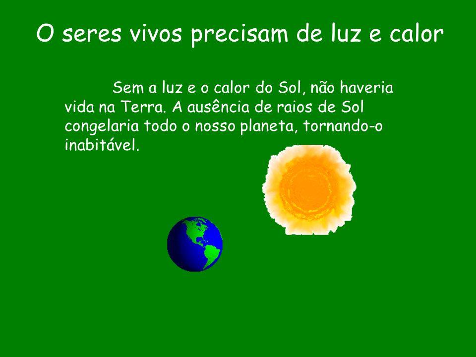O seres vivos precisam de luz e calor Sem a luz e o calor do Sol, não haveria vida na Terra. A ausência de raios de Sol congelaria todo o nosso planet