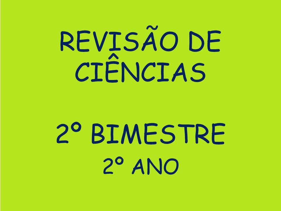 REVISÃO DE CIÊNCIAS 2º BIMESTRE 2º ANO