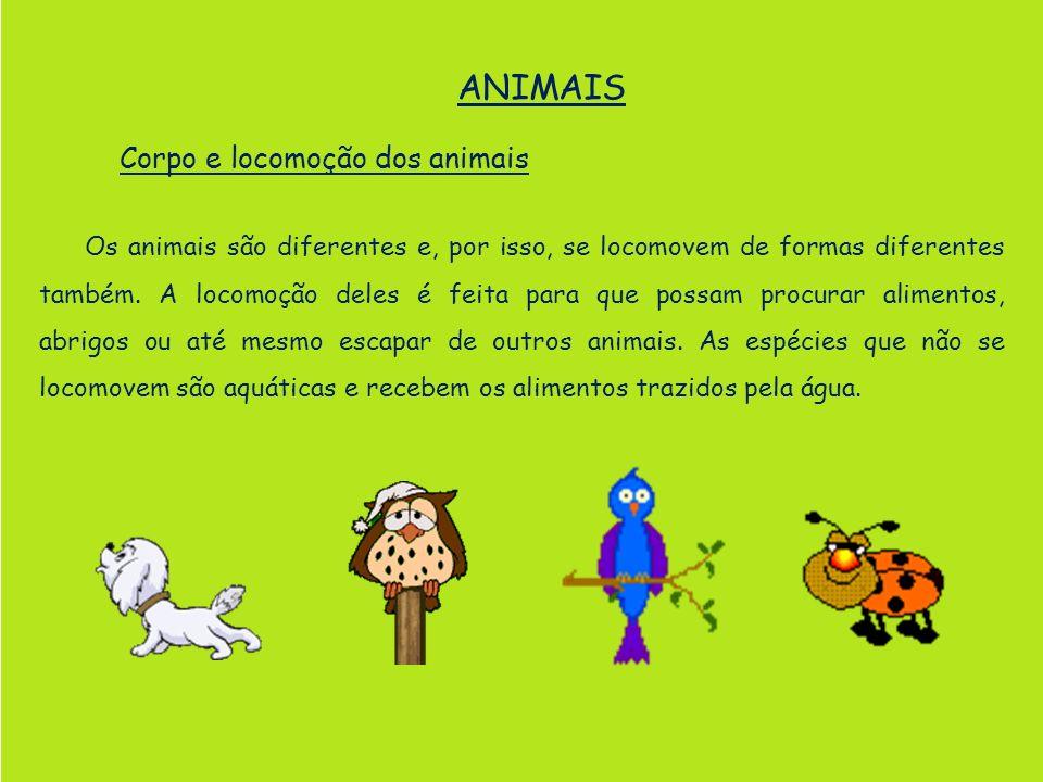 ANIMAIS Corpo e locomoção dos animais Os animais são diferentes e, por isso, se locomovem de formas diferentes também. A locomoção deles é feita para