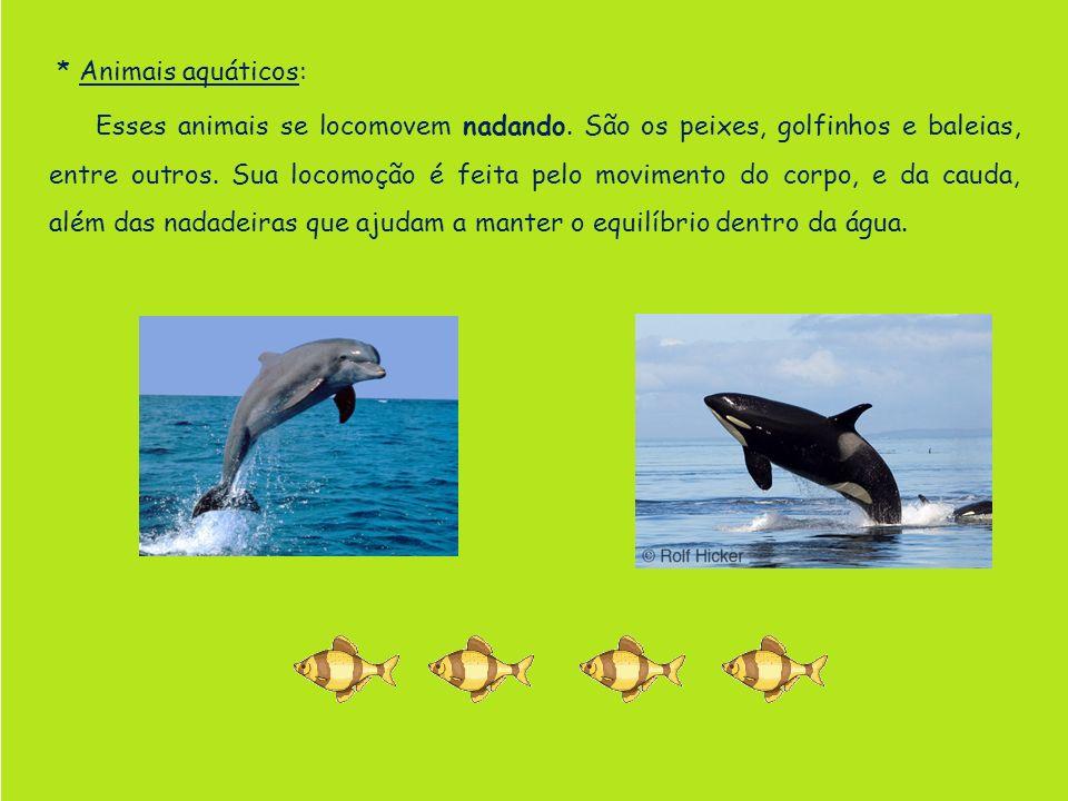 * Animais aquáticos: Esses animais se locomovem nadando. São os peixes, golfinhos e baleias, entre outros. Sua locomoção é feita pelo movimento do cor