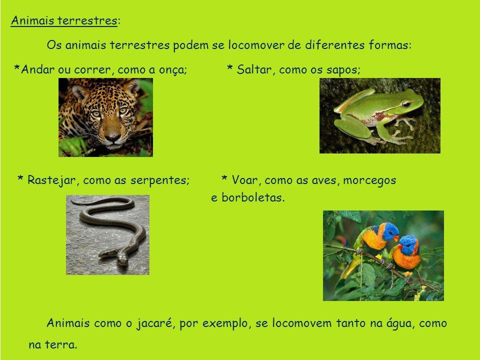 Animais terrestres: Os animais terrestres podem se locomover de diferentes formas: *Andar ou correr, como a onça; * Saltar, como os sapos; * Rastejar,