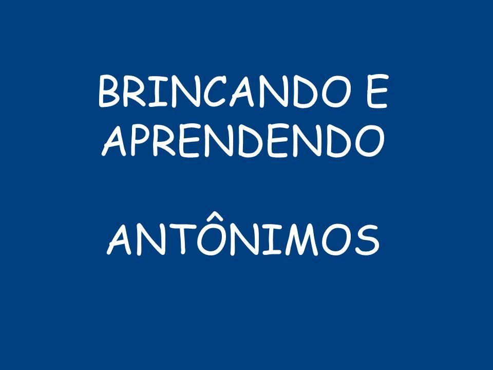 BRINCANDO E APRENDENDO ANTÔNIMOS