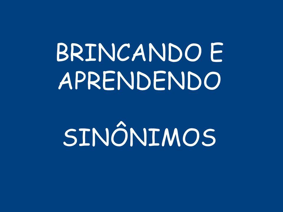 BRINCANDO E APRENDENDO SINÔNIMOS