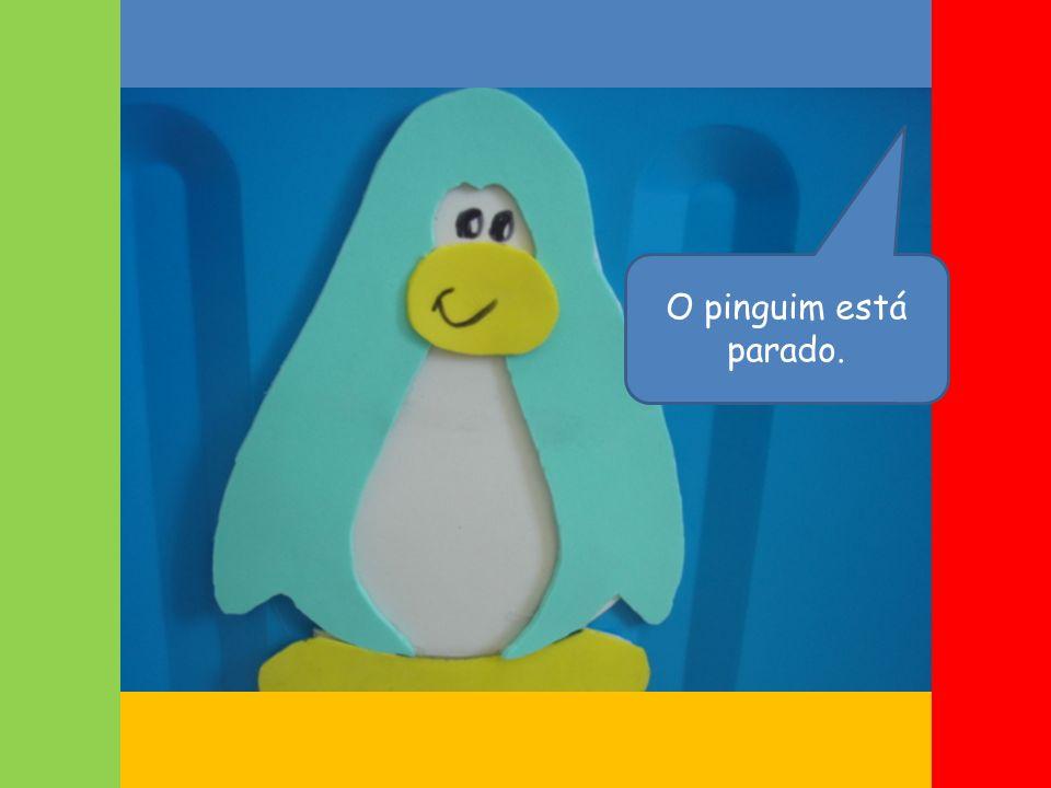 O pinguim está parado.