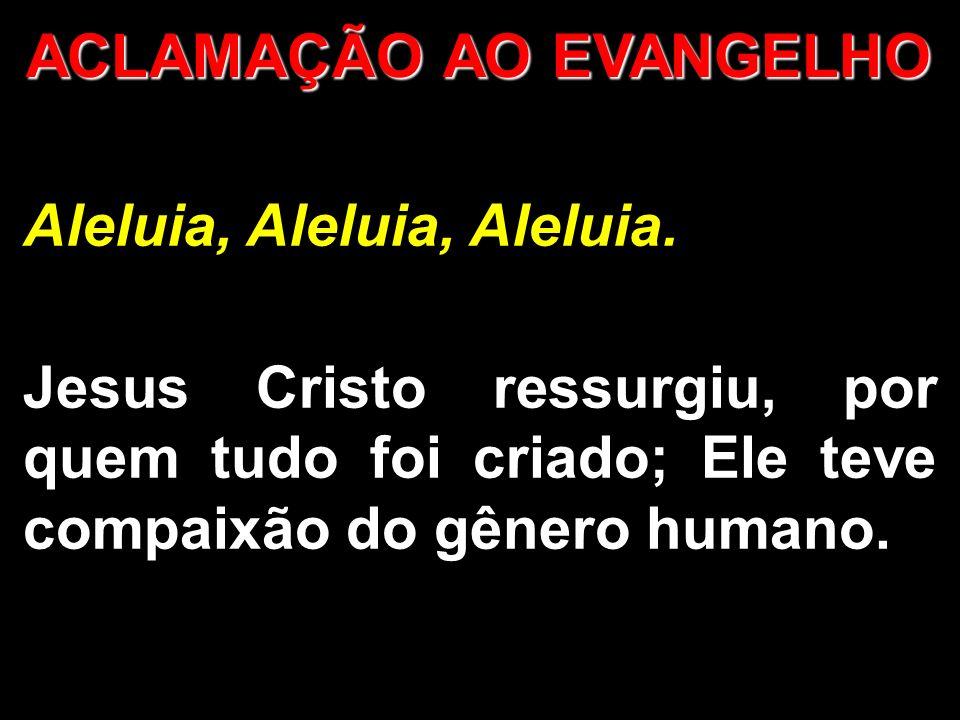 ACLAMAÇÃO AO EVANGELHO Aleluia, Aleluia, Aleluia.