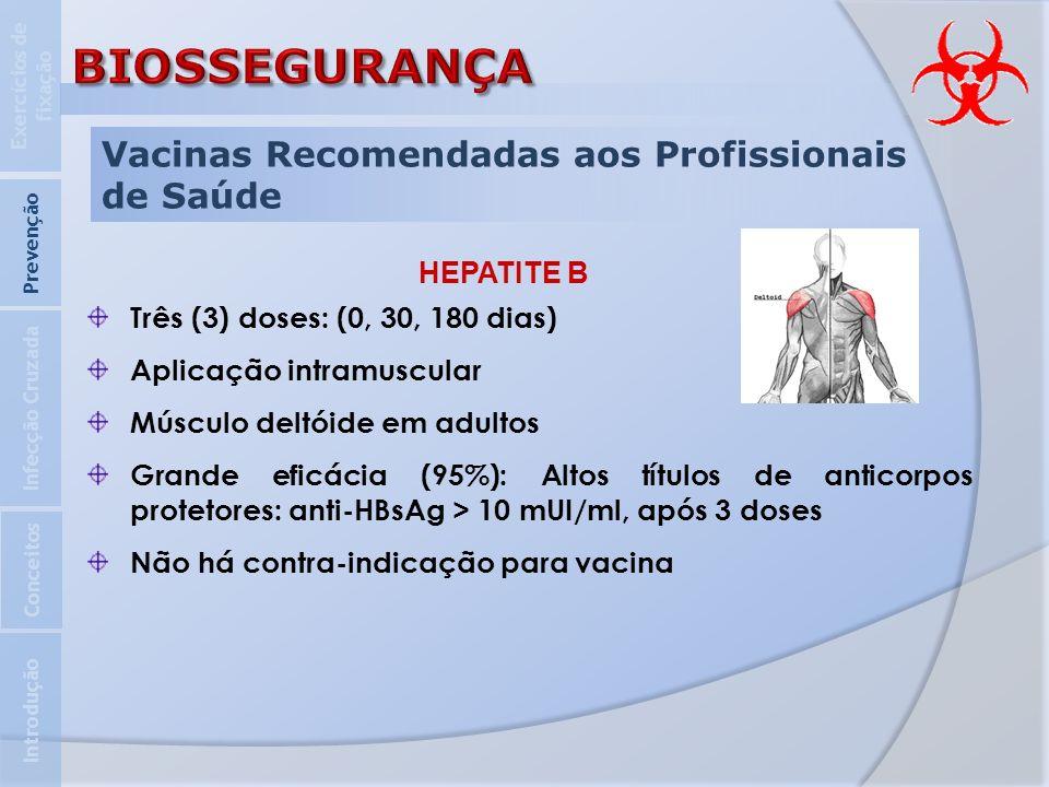 Vacinas Recomendadas aos Profissionais de Saúde HEPATITE B Três (3) doses: (0, 30, 180 dias) Aplicação intramuscular Músculo deltóide em adultos Grand