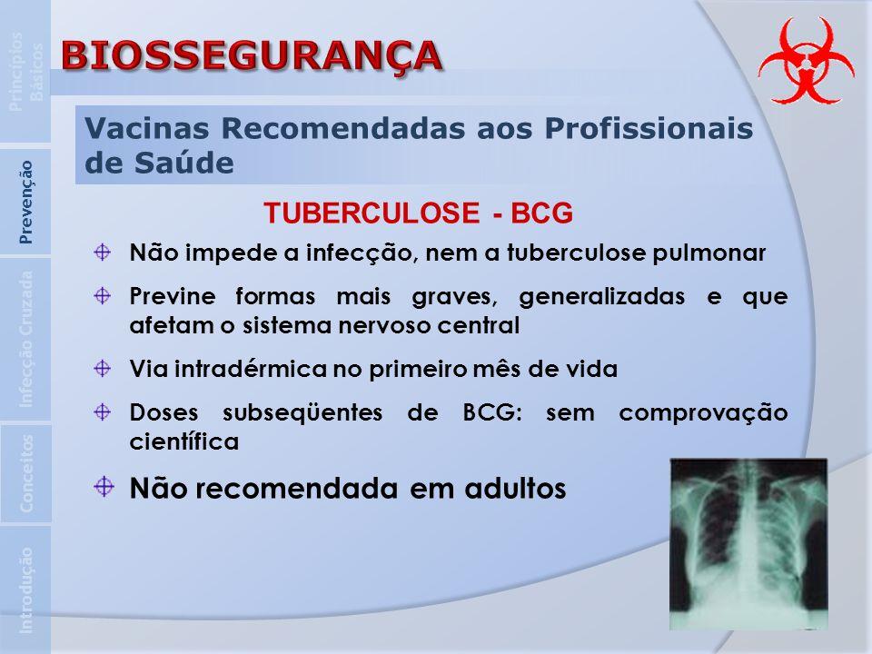 Vacinas Recomendadas aos Profissionais de Saúde Introdução Infecção Cruzada Prevenção Princípios Básicos Conceitos TUBERCULOSE - BCG Não impede a infe