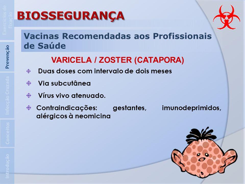 Vacinas Recomendadas aos Profissionais de Saúde Introdução Infecção Cruzada Prevenção Exercícios de fixação Conceitos VARICELA / ZOSTER (CATAPORA) Dua