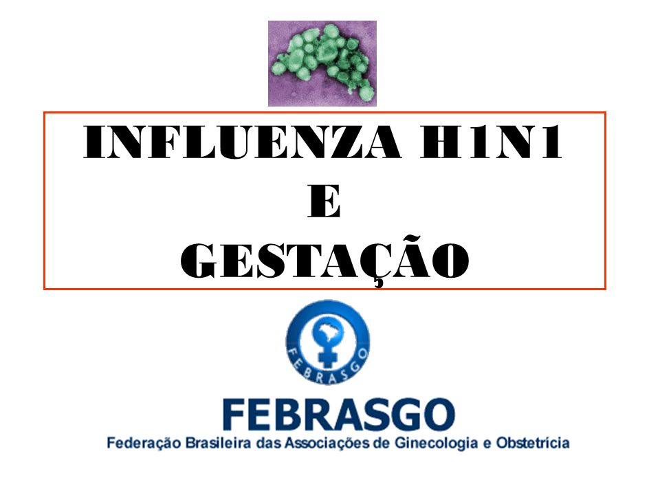Infecção por H1N1 em Gestantes Maior risco para desenvolvimento de complicações.