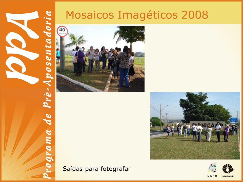 Mosaicos Imagéticos 2008 Saídas para fotografar