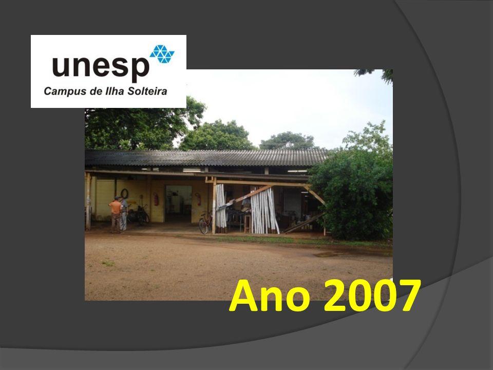 Ano 2007