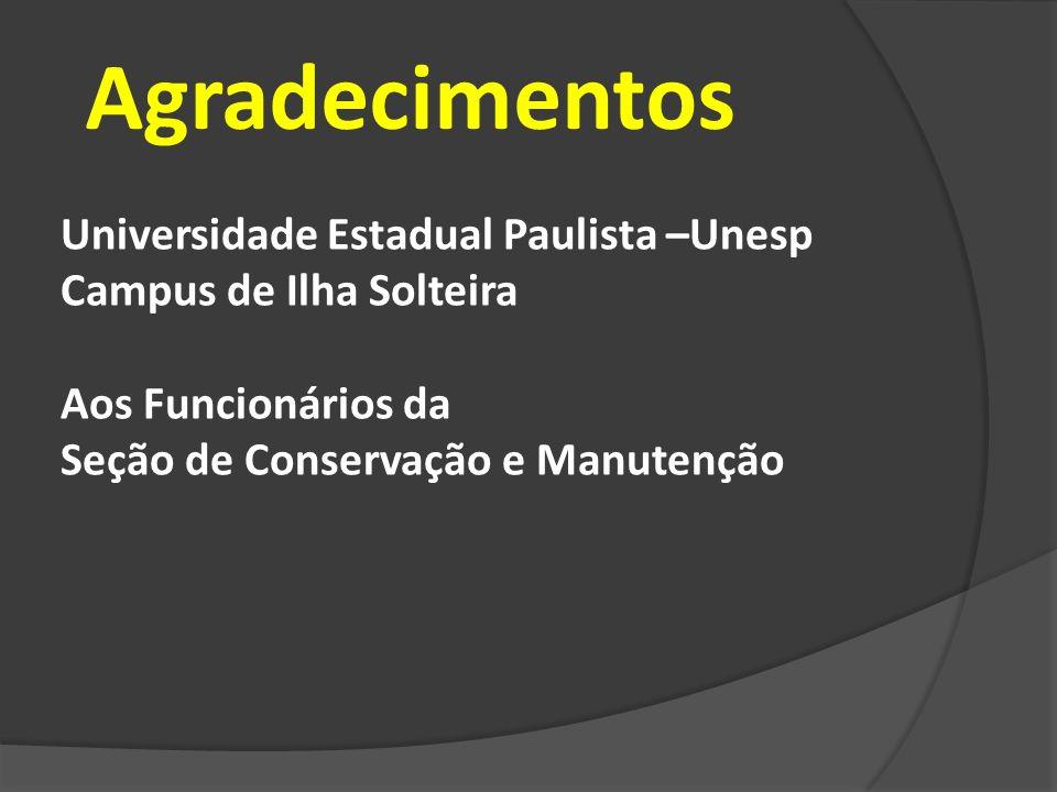 Agradecimentos Universidade Estadual Paulista –Unesp Campus de Ilha Solteira Aos Funcionários da Seção de Conservação e Manutenção