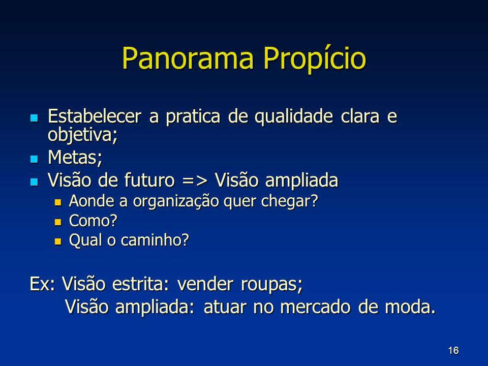 16 Panorama Propício Estabelecer a pratica de qualidade clara e objetiva; Estabelecer a pratica de qualidade clara e objetiva; Metas; Metas; Visão de