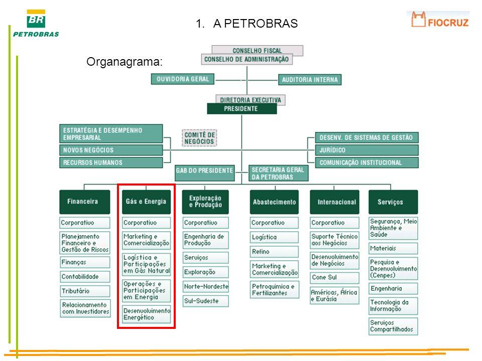 1.A PETROBRAS Lucro Líquido (2006)R$ 25,919 milhões Reservas provadas SEC (2006) 11.458 bilhões de barris de óleo e gás equivalente Plataformas de produção103 (76 fixas e 27 flutuantes) Unidades fabris16 refinarias + 3 fábricas de fertilizantes Produção (2006) 1.920 mil barris de petróleo/dia 42 Milhões m 3 de gás/dia Empregados (2007) Controladora: 50.040 (GE: 1.477) Sistema Petrobras: 68.273 Investimento Plano de Negócios 2008-2012 US$ 112,4 bilhões Dutos (2007)6.481Km Geração de EnergiaGN: 4.462 MW, OD: 31 MW, PCH: 16 MW