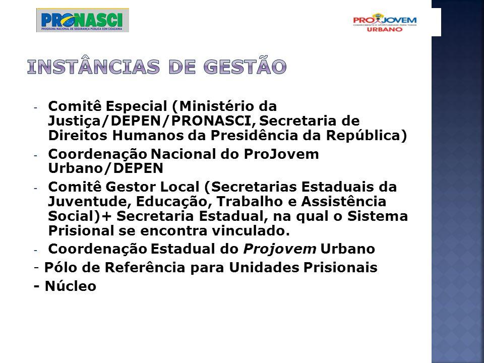 - Comitê Especial (Ministério da Justiça/DEPEN/PRONASCI, Secretaria de Direitos Humanos da Presidência da República) - Coordenação Nacional do ProJove
