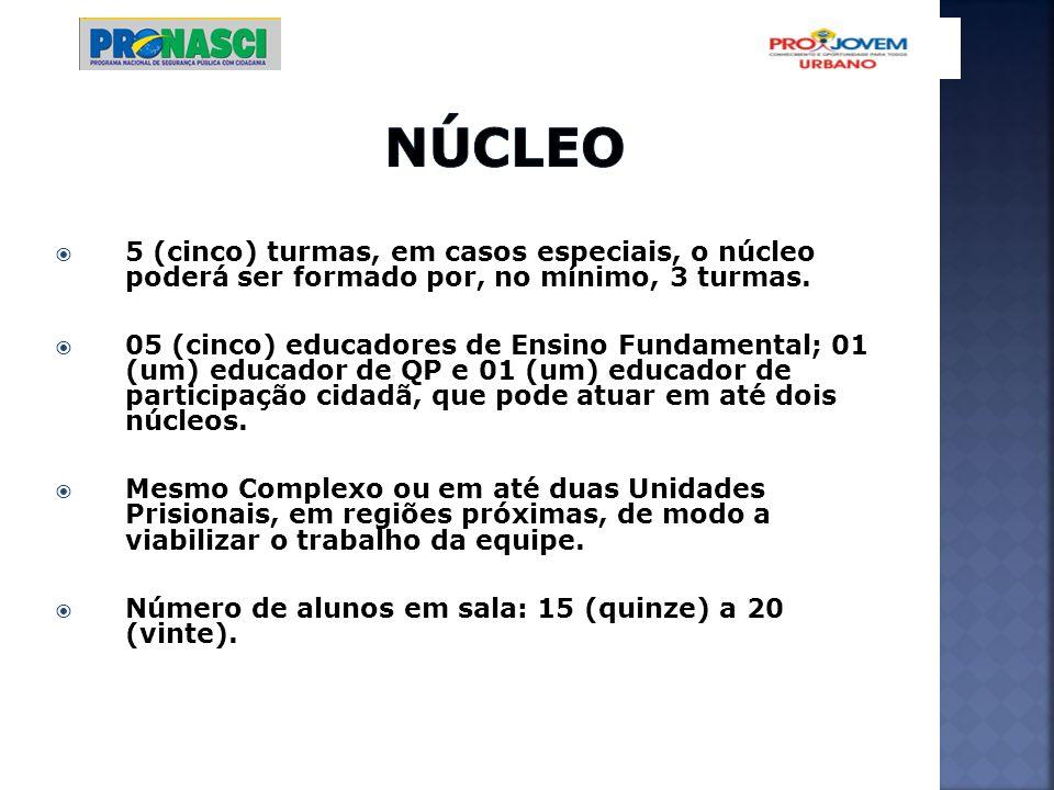 5 (cinco) turmas, em casos especiais, o núcleo poderá ser formado por, no mínimo, 3 turmas. 05 (cinco) educadores de Ensino Fundamental; 01 (um) educa
