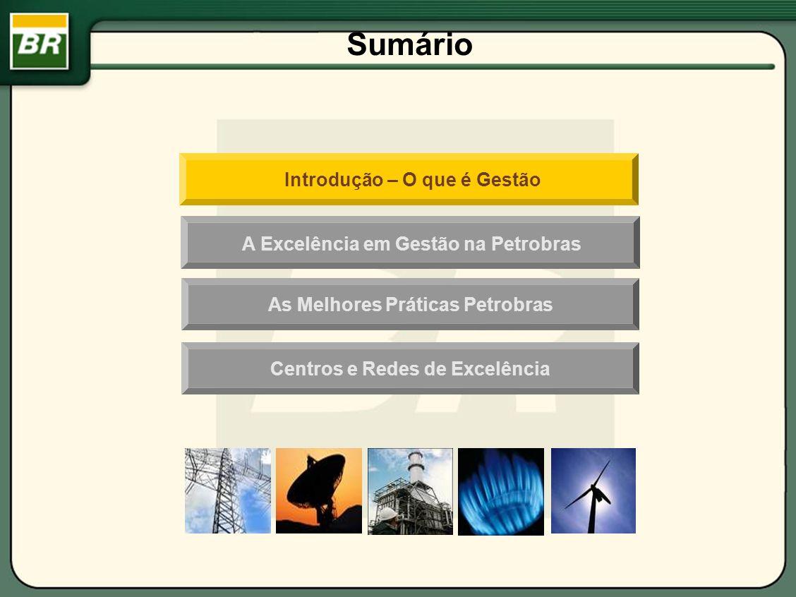 AQG na Petrobras Grau de Maturidade de Processos Gerenciais Fatores de Avaliação - Eixos da dimensão processos gerenciais Fonte: FNQ, 2007