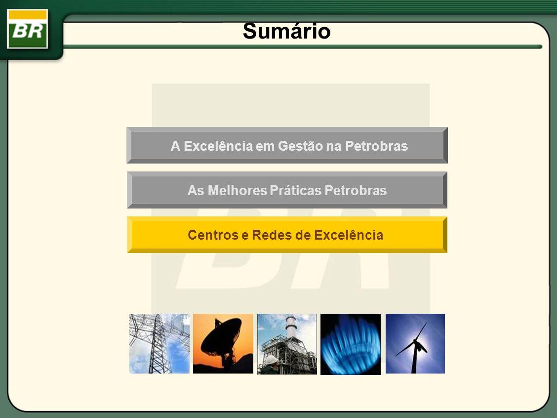 Centros e Redes de Excelência Sumário A Excelência em Gestão na Petrobras As Melhores Práticas Petrobras