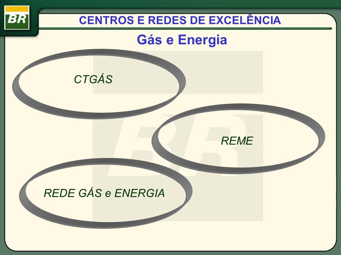 CENTROS E REDES DE EXCELÊNCIA Gás e Energia CTGÁS REDE GÁS e ENERGIA REME