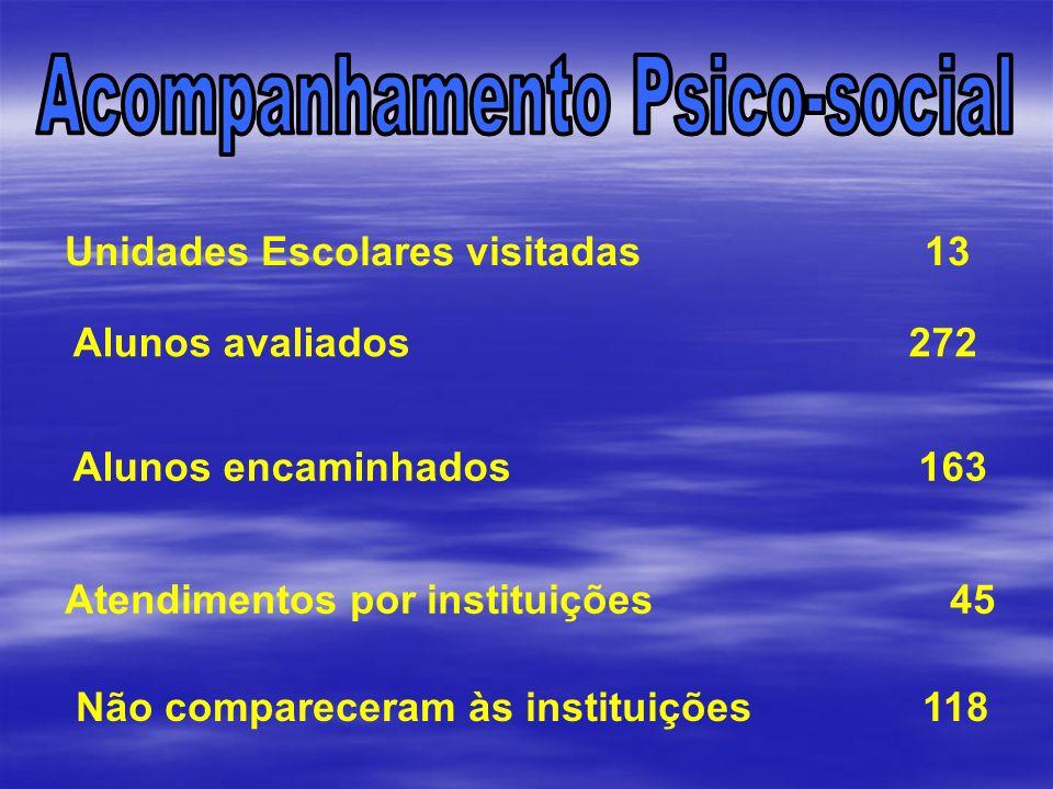 Unidades Escolares visitadas 13 Alunos avaliados 272 Alunos encaminhados 163 Atendimentos por instituições 45 Não compareceram às instituições 118