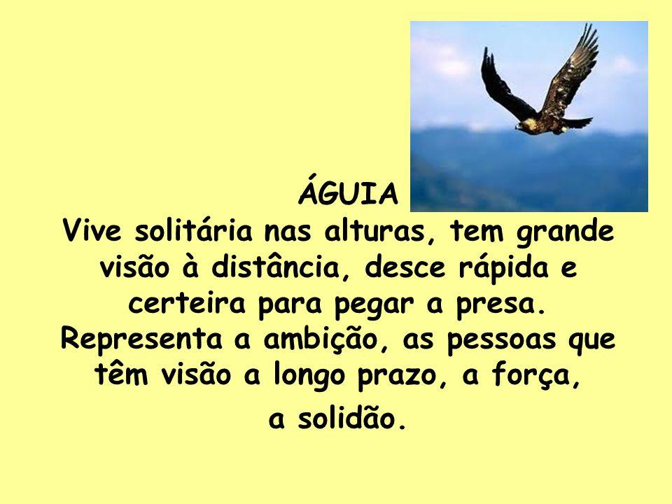 ÁGUIA Vive solitária nas alturas, tem grande visão à distância, desce rápida e certeira para pegar a presa. Representa a ambição, as pessoas que têm v