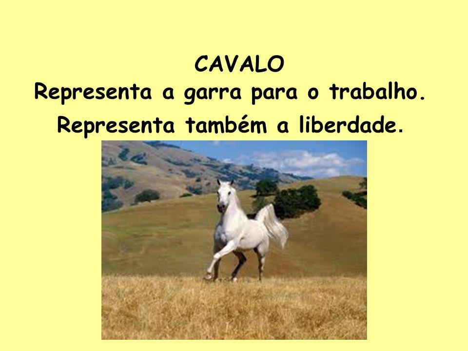 CAVALO Representa a garra para o trabalho. Representa também a liberdade.