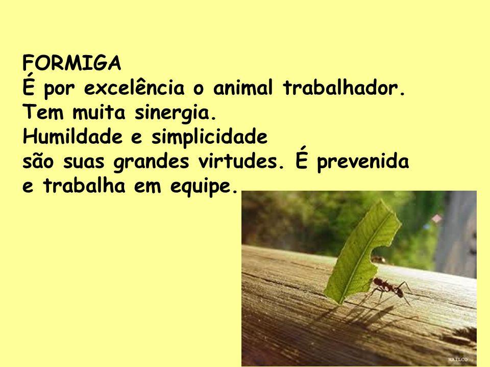 FORMIGA É por excelência o animal trabalhador. Tem muita sinergia. Humildade e simplicidade são suas grandes virtudes. É prevenida e trabalha em equip
