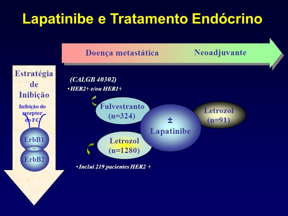 Letrozol (n=91) Doença metastática Neoadjuvante Estratégia de Inibição ErbB1 ErbB2 + Inclui 219 pacientes HER2 + Letrozol (n=1280) Fulvestranto (n=324) ± Lapatinibe HER2+ e/ou HER1+ (CALGB 40302) Lapatinibe e Tratamento Endócrino Inibição do receptor do FC