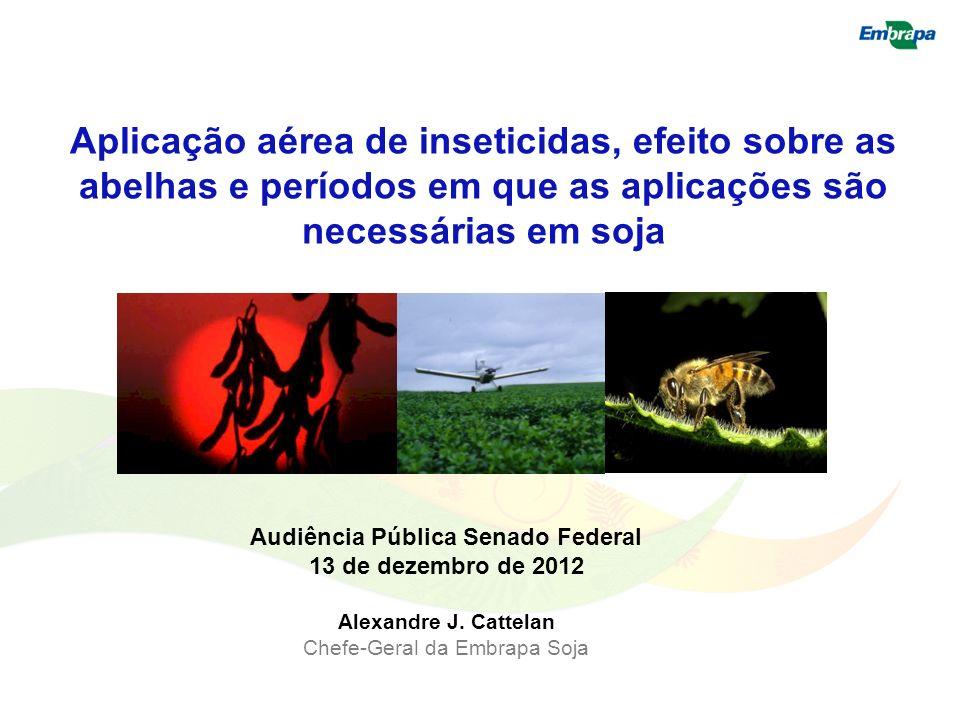Aplicação aérea de inseticidas, efeito sobre as abelhas e períodos em que as aplicações são necessárias em soja Audiência Pública Senado Federal 13 de
