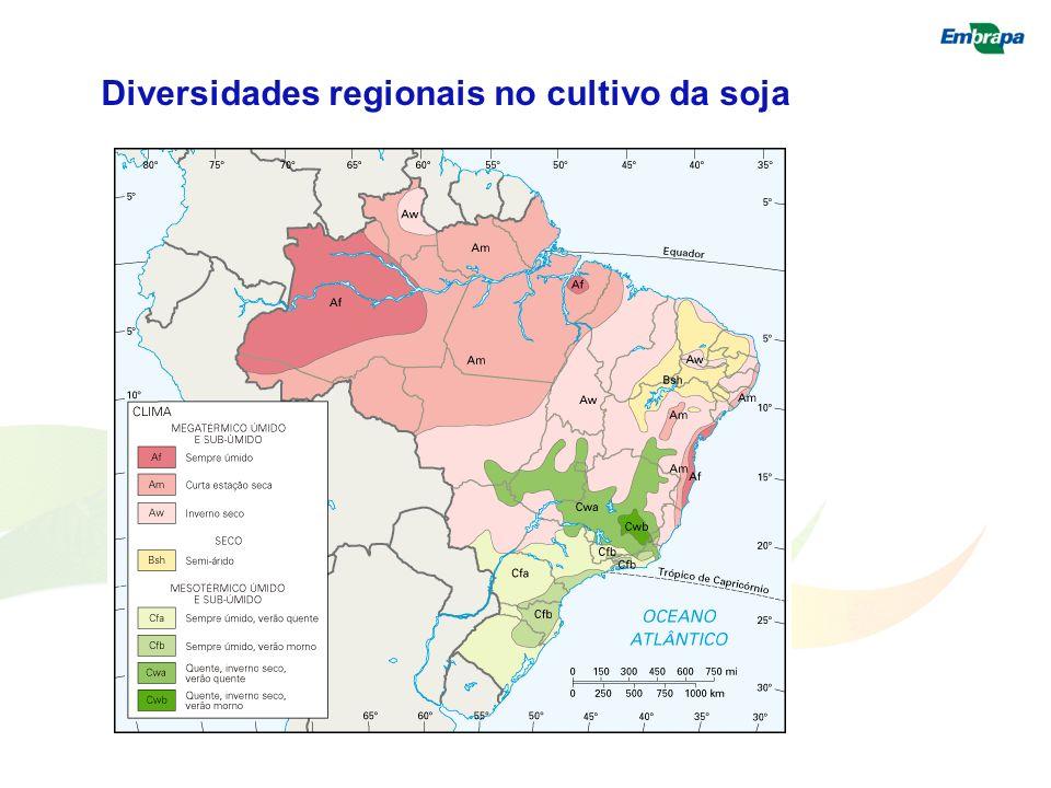 Diversidades regionais no cultivo da soja