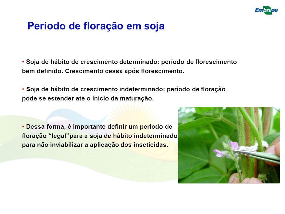 Período de floração em soja Soja de hábito de crescimento determinado: período de florescimento bem definido. Crescimento cessa após florescimento. So