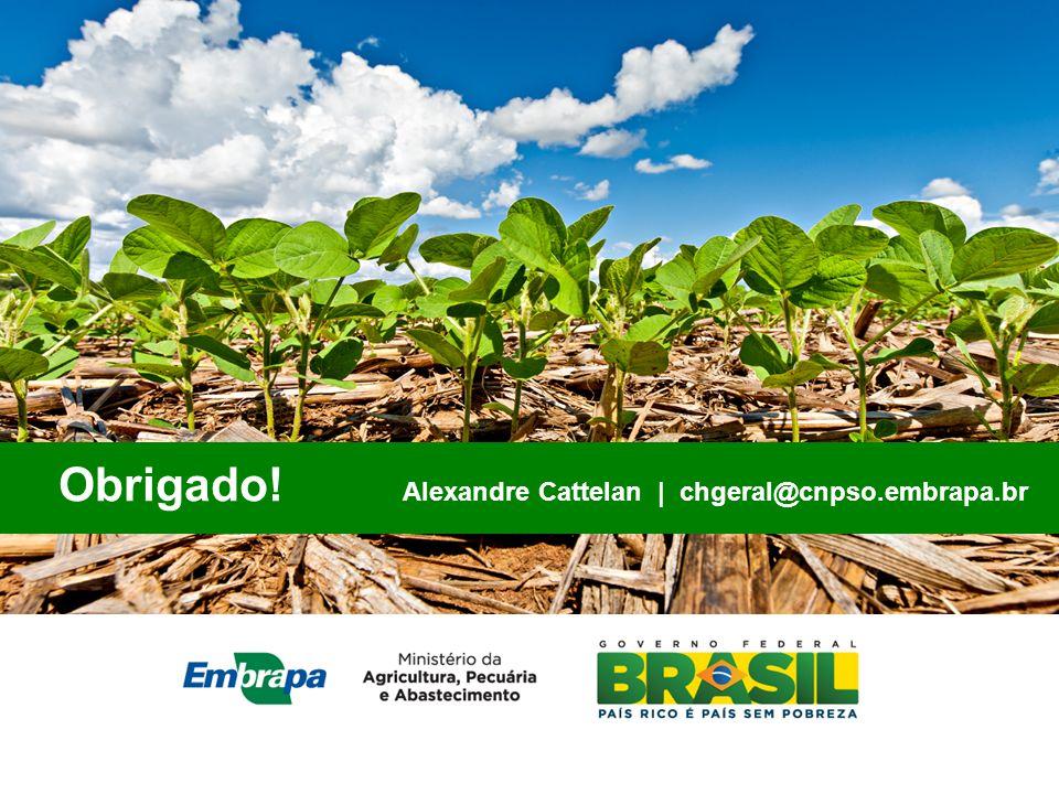 Obrigado! Alexandre Cattelan chgeral@cnpso.embrapa.br Obrigado! Alexandre Cattelan | chgeral@cnpso.embrapa.br