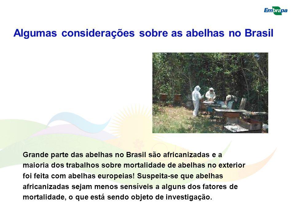 Grande parte das abelhas no Brasil são africanizadas e a maioria dos trabalhos sobre mortalidade de abelhas no exterior foi feita com abelhas europeia