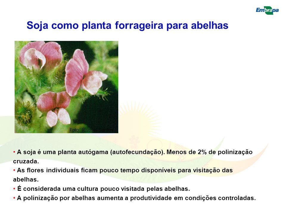 A soja é uma planta autógama (autofecundação). Menos de 2% de polinização cruzada. As flores individuais ficam pouco tempo disponíveis para visitação