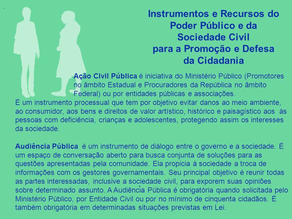 . Instrumentos e Recursos do Poder Público e da Sociedade Civil para a Promoção e Defesa da Cidadania.. Ação Civil Pública é iniciativa do Ministério