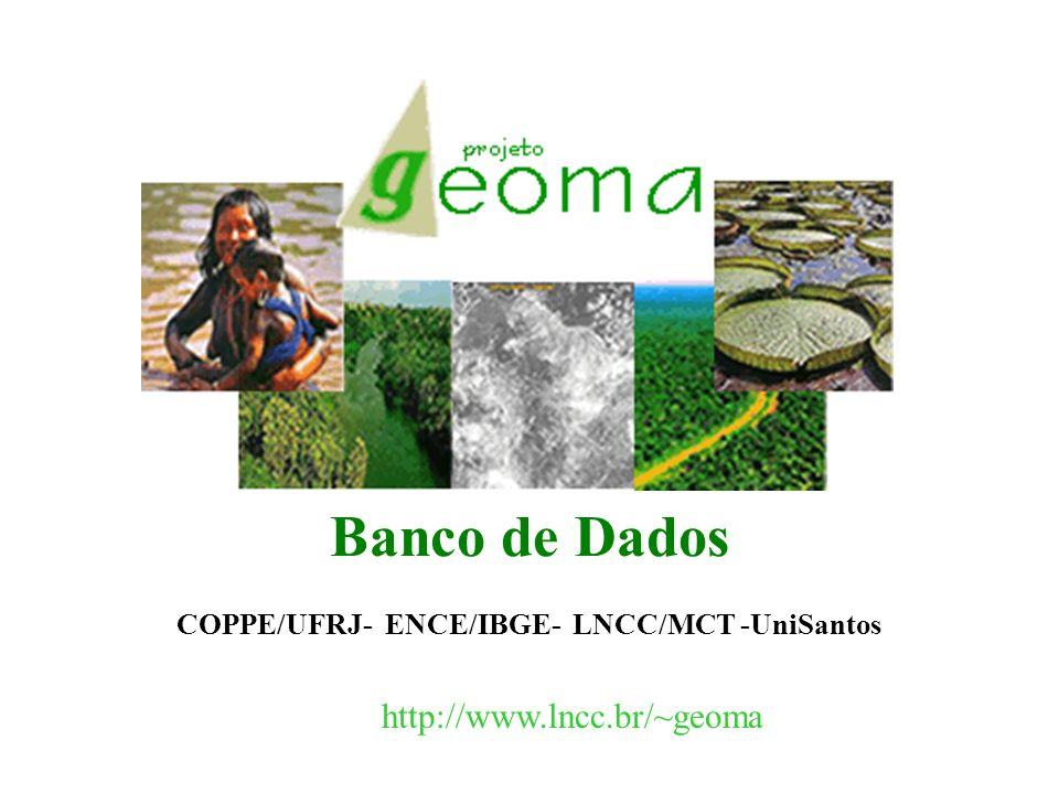 Banco de Dados COPPE/UFRJ- ENCE/IBGE- LNCC/MCT -UniSantos http://www.lncc.br/~geoma