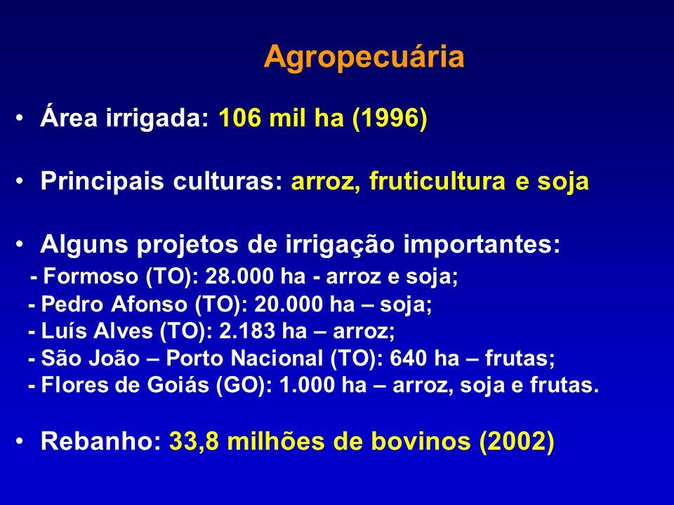 Área irrigada: 106 mil ha (1996) Principais culturas: arroz, fruticultura e soja Alguns projetos de irrigação importantes: - Formoso (TO): 28.000 ha -