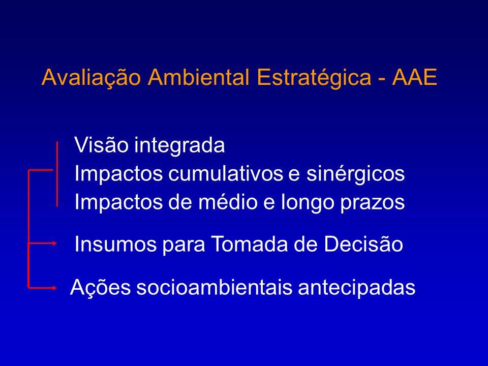 Avaliação Ambiental Estratégica - AAE Visão integrada Impactos cumulativos e sinérgicos Impactos de médio e longo prazos Insumos para Tomada de Decisã