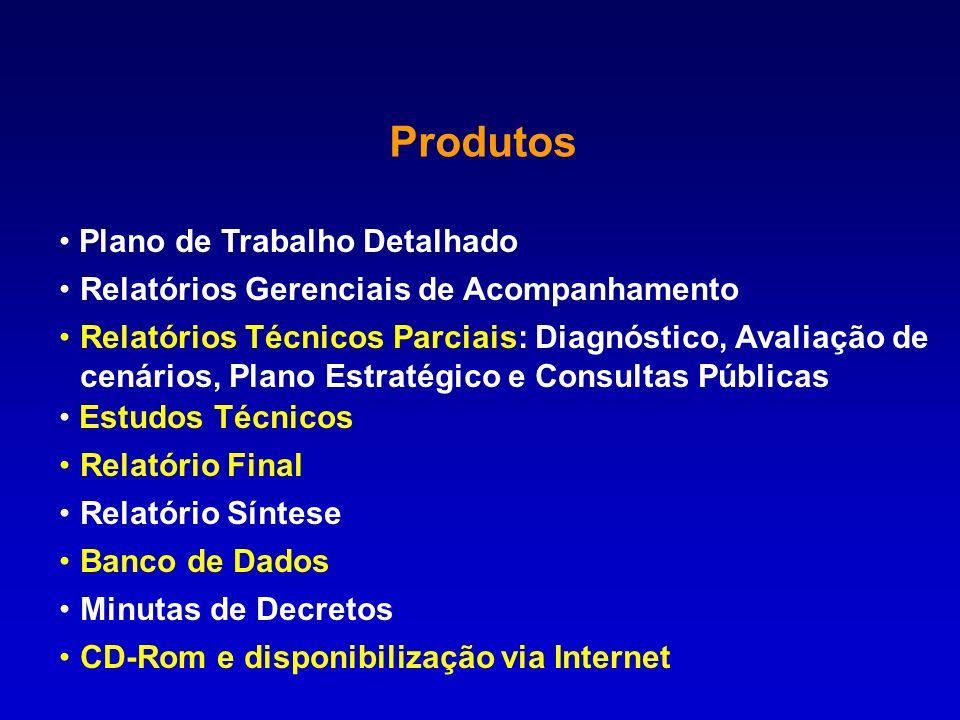 Produtos Plano de Trabalho Detalhado Relatórios Gerenciais de Acompanhamento Relatórios Técnicos Parciais: Diagnóstico, Avaliação de cenários, Plano E